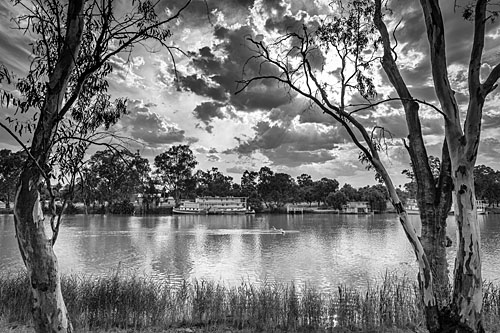Picture of mildura murray river victoria australia