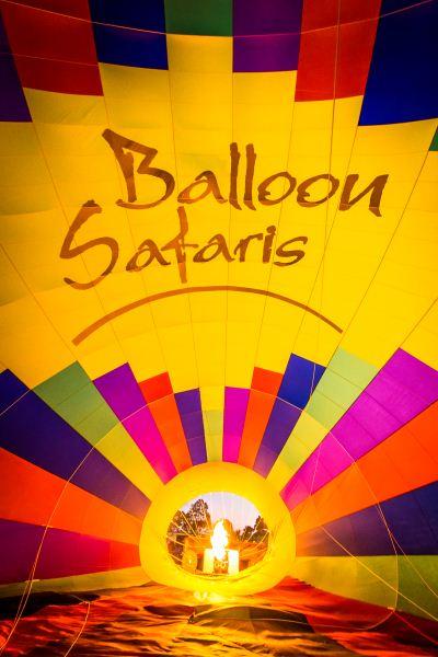 Inside Out, Balloon Safaris