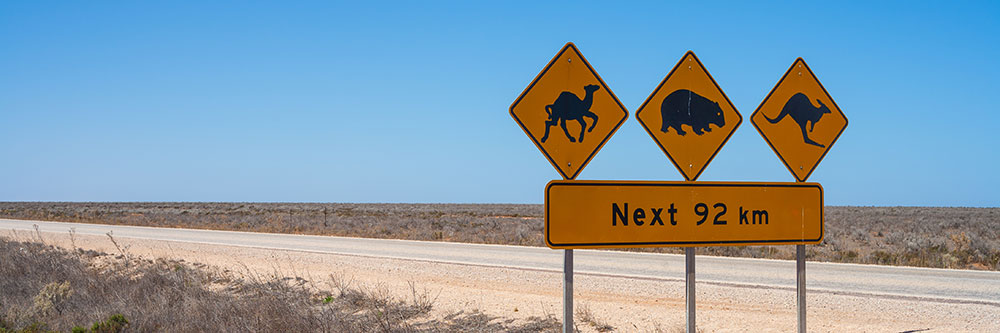 Nullarbor National Park