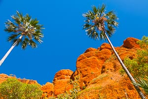 Photographs of Western Australia