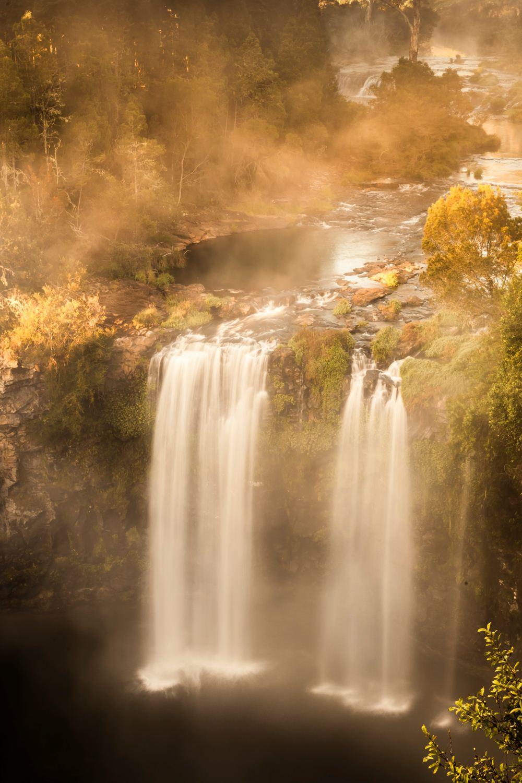 Dangar Falls, Dorrigo
