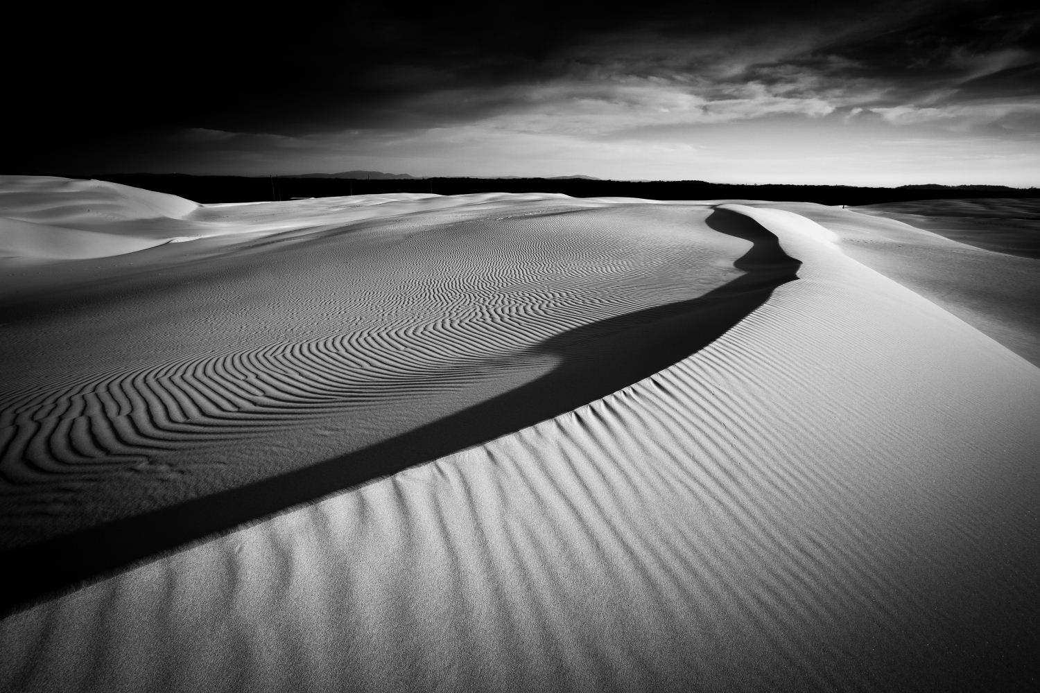 Stockton Study in Black and White, Stockton Sands, Mid North Coast, NSW